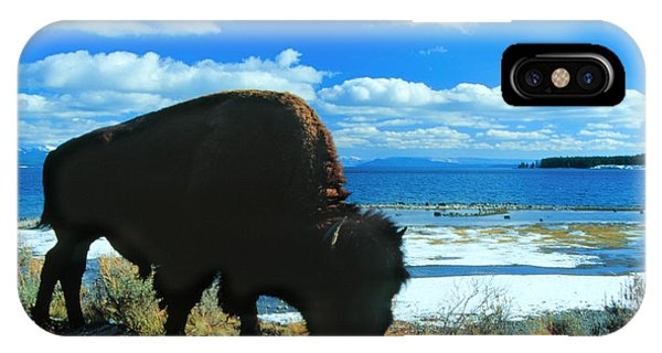Bison Yellowstone IPhone Case