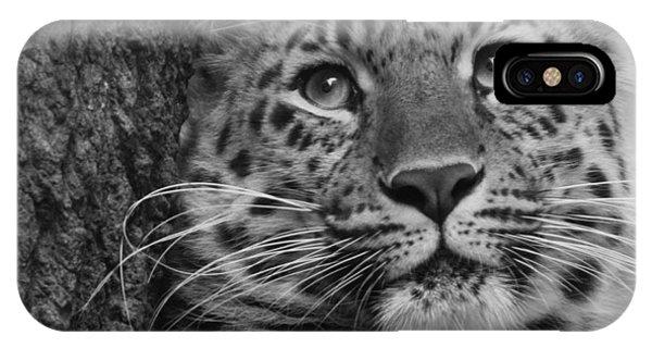 Black And White Amur Leopard IPhone Case