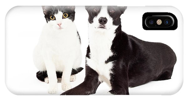 Black And White Cat And Dog IPhone Case