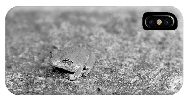 Black And White Frogger IPhone Case