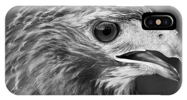 Black And White Hawk Portrait IPhone Case