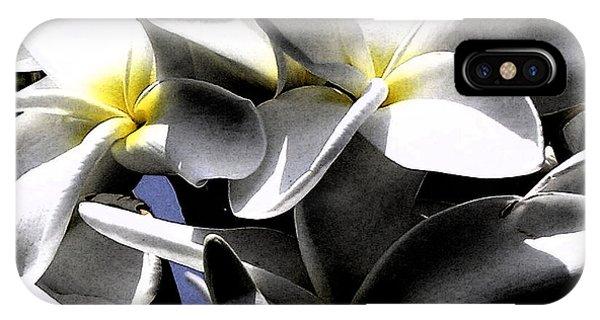 Black And White Plumeria IPhone Case