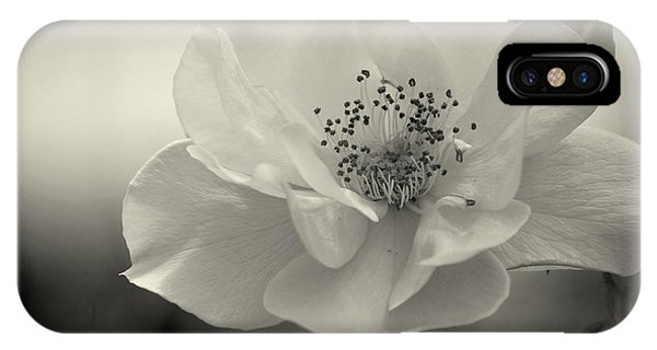 Black And White Rose IPhone Case