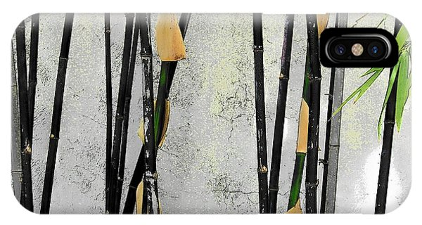 Black Bamboo #2 Sarasota IPhone Case