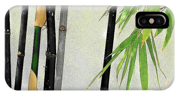 Black Bamboo Sarasota IIi IPhone Case
