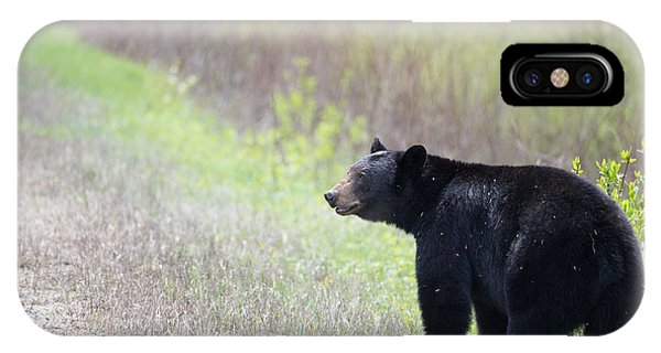 Black Bear 3 Phone Case by Andy Fung
