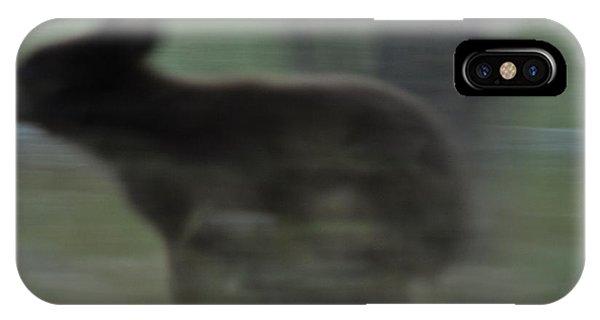Black Bear Cub Running IPhone Case