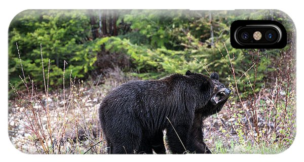 Black Bears Having Fun Phone Case by Andy Fung