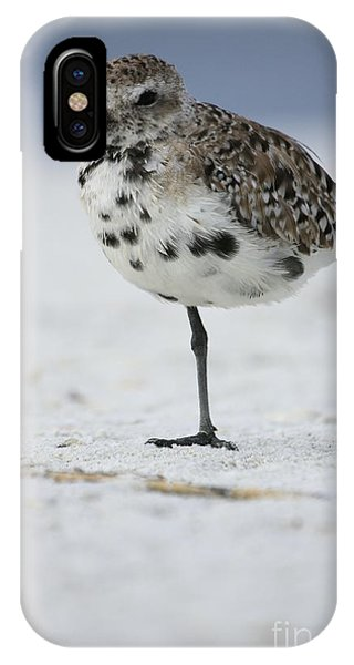 Black-bellied Plover IPhone Case