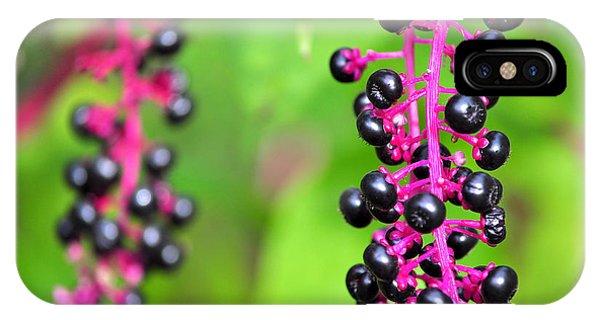 Black Berries IPhone Case