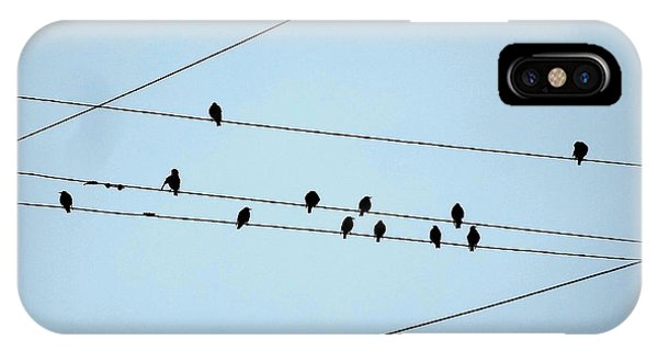 Black Birds Waiting In Blue IPhone Case