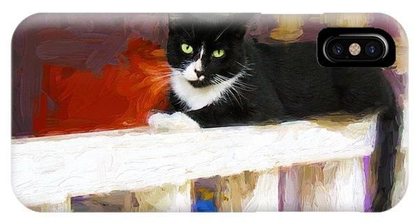 Black Cat In Color Series 2 IPhone Case