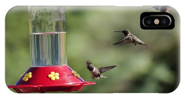 Black-chinned Hummingbird Action Panorama IPhone Case