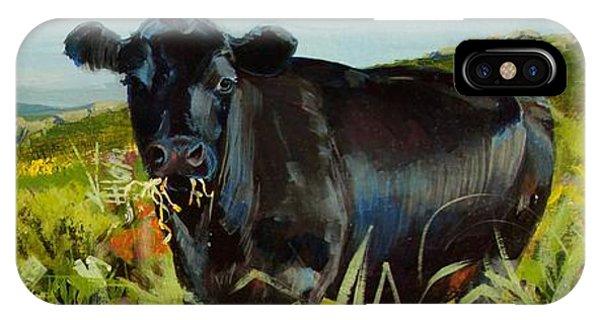 Black Cow Dartmoor IPhone Case
