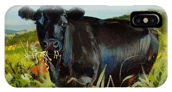 Black Cow Dartmoor IPhone Case