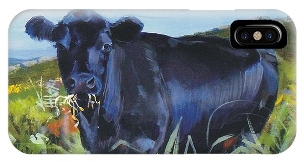 Cows Dartmoor IPhone Case