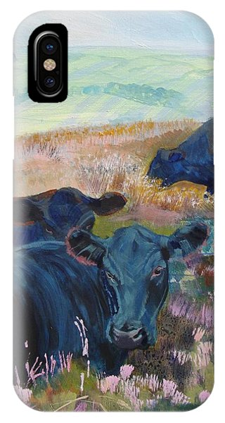 Black Cows On Dartmoor IPhone Case
