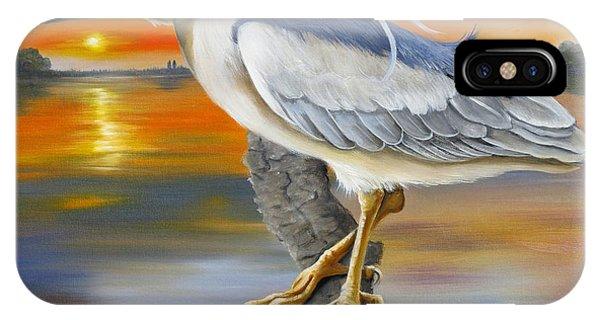 Black Crowned Night Heron At The Jordan IPhone Case