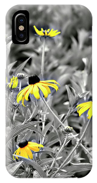 Black-eyed Susan Field IPhone Case