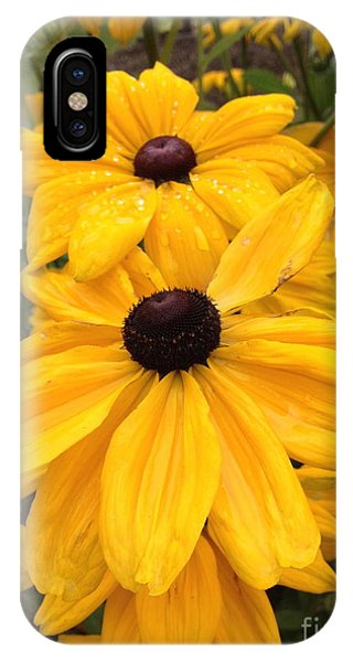 IPhone Case featuring the photograph Black Eyed Susans by Barbara Von Pagel