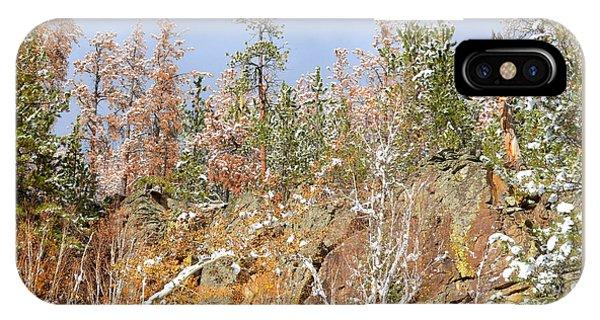 Black Hills Color Palette IPhone Case