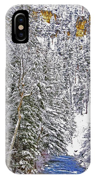 Black Hills Winter IPhone Case