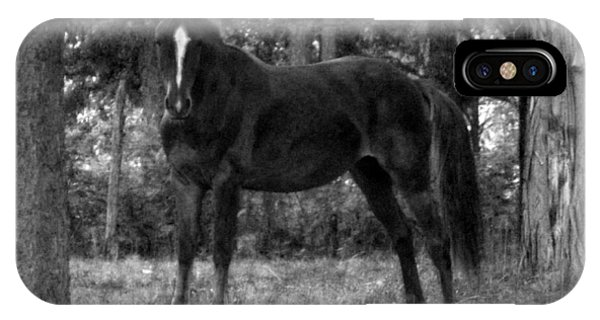 Black Horse IPhone Case