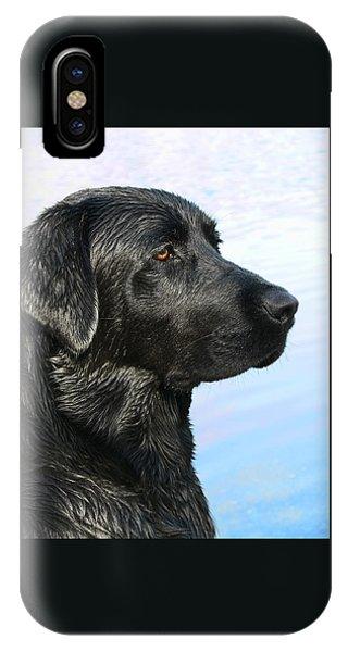 Black Labrador Retriever After The Swim IPhone Case