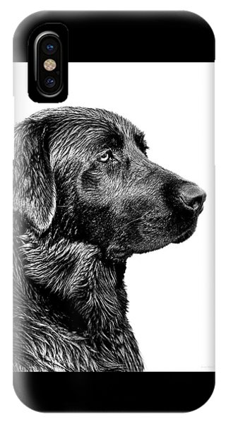 Black Labrador Retriever Dog Monochrome IPhone Case