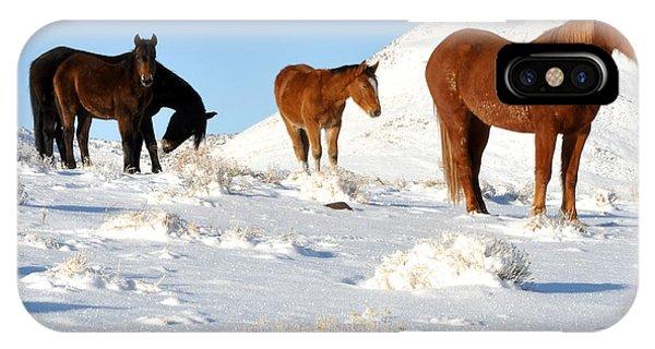 Black N' Brown Mustangs In Snow IPhone Case