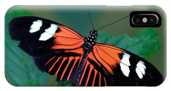 Black Orange And White IPhone Case