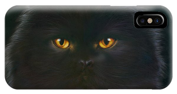 Andrew iPhone Case - Black Persian by MGL Meiklejohn Graphics Licensing