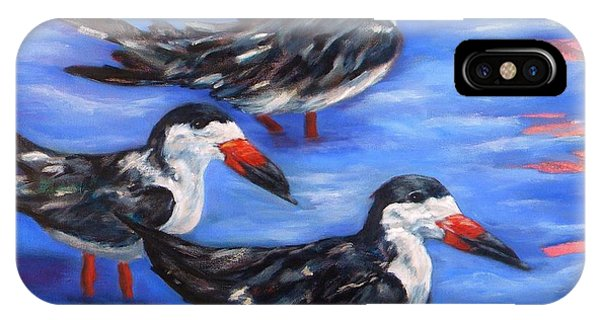 Black Skimmers IPhone Case