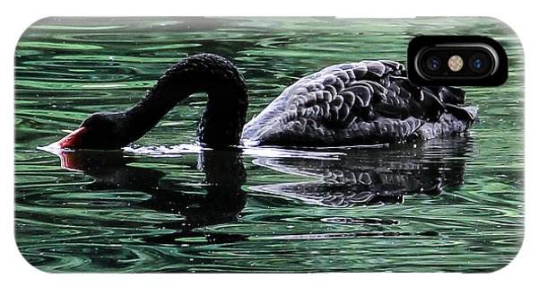 Black Swan II Phone Case by Marie  Cardona
