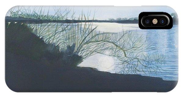Black Swan Lake IPhone Case