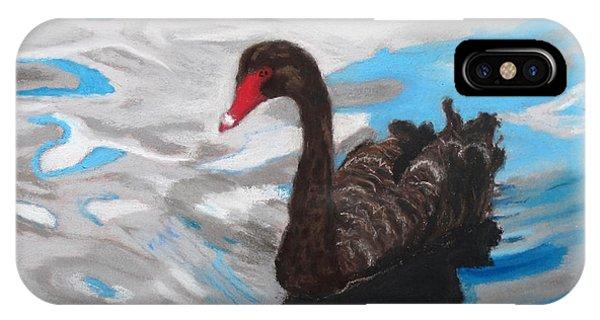Black Swan Swimming Lake Eola IPhone Case