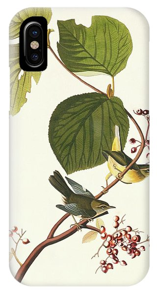 Black-throated Blue Warbler Phone Case by Natural History Museum, London/science Photo Library