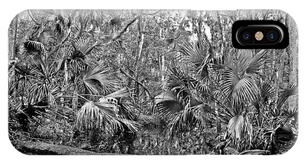 Black Water. Green Swamp Wildlife Management Area Polk County. IPhone Case
