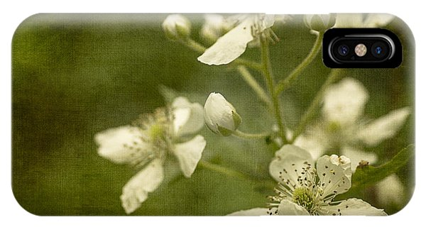 Blackberry Flowers With Textures IPhone Case