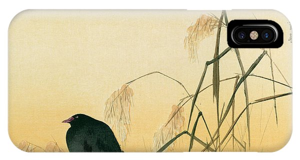 Audubon iPhone X Case - Blackbird by Japanese School