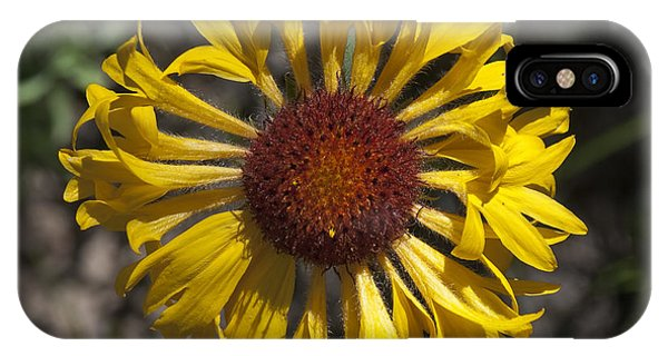 Blanket Flower IPhone Case