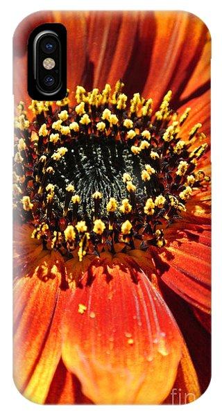 Blazing Sunflower IPhone Case
