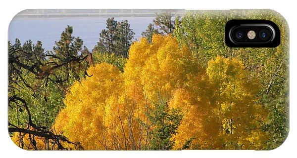 Blazing Yellow IPhone Case