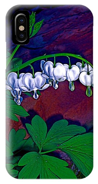 Bleeding Heart 1 IPhone Case