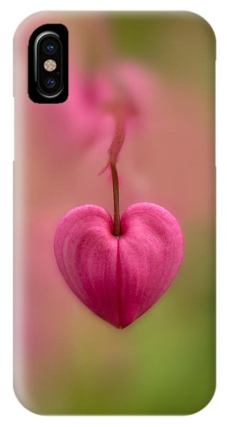 Bleeding Heart Flower IPhone Case