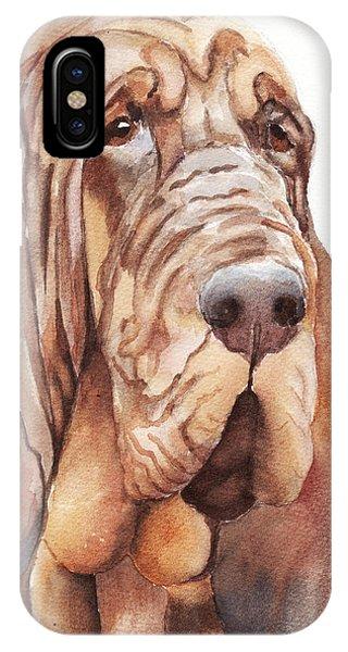 Bloodhound IPhone Case