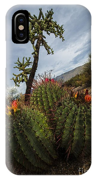Bloomin Barrels IPhone Case