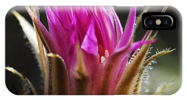 Blooming Barrel Cactus IPhone Case