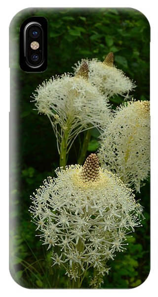 Blooming Bear Grass IPhone Case