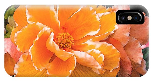 Blooming Begonia Image 1 IPhone Case